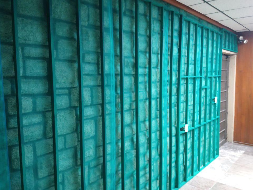 Muro Verde Puebla Sports Grass 01