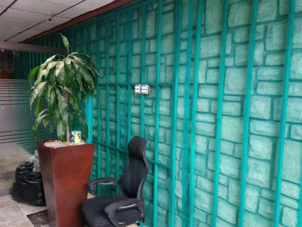 Muro Verde Puebla Sports Grass 03