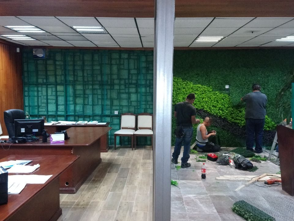 Muro Verde Puebla Sports Grass 06