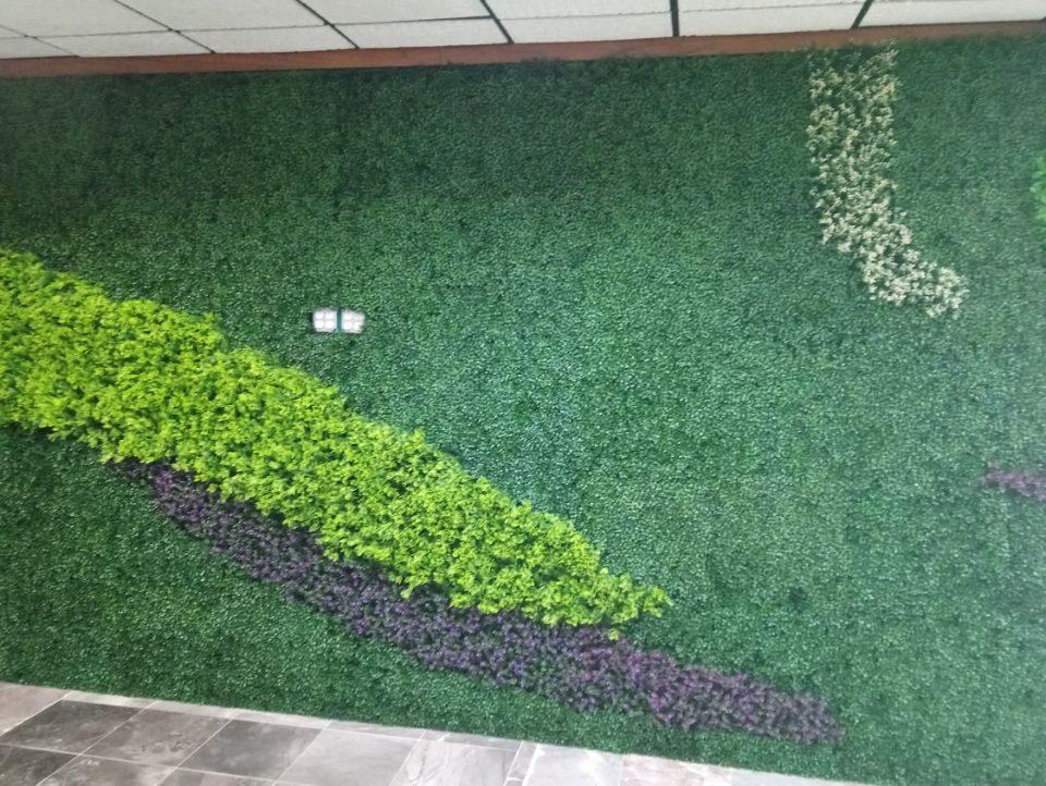 Muro Verde Puebla Sports Grass 10