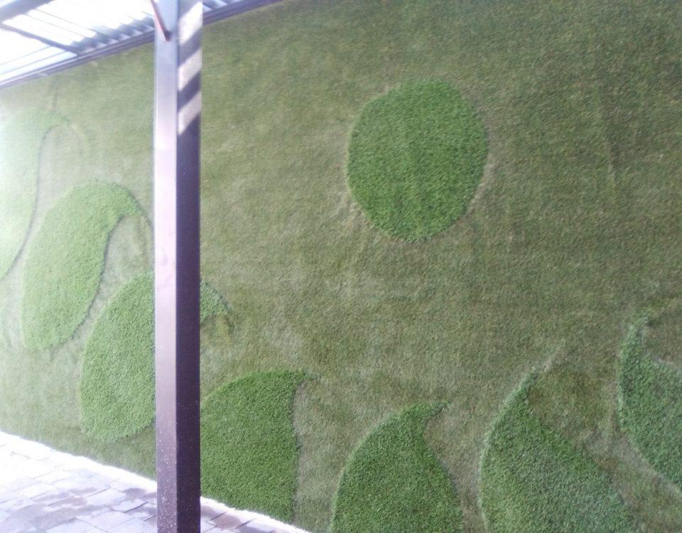 Muro Verde Pasto Sintetico Zavalerta Puebla Sports Grass 01