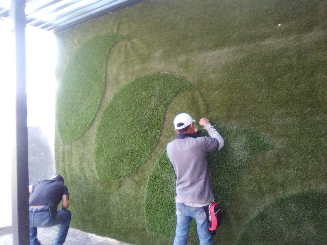 Muro Verde Pasto Sintetico Zavaleta Puebla Sports Grass 06