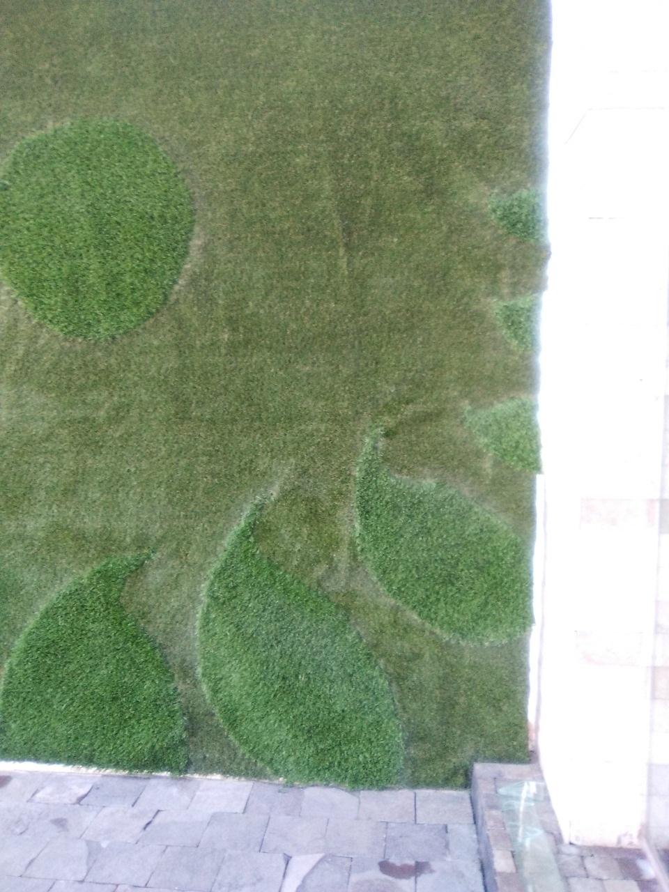 Muro Verde Pasto Sintetico Zavaleta Puebla Sports Grass 07