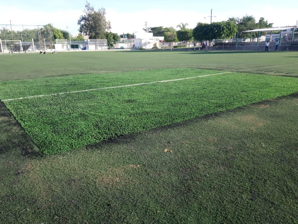 Cancha de fútbol soccer, reparación del círculo central de la cancha y áreas chicas Sports Grass 15