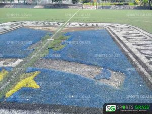Cancha de fútbol soccer, reparación del círculo central de la cancha y áreas chicas Sports Grass 05