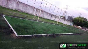 Cancha de fútbol soccer, reparación del círculo central de la cancha y áreas chicas Sports Grass 12