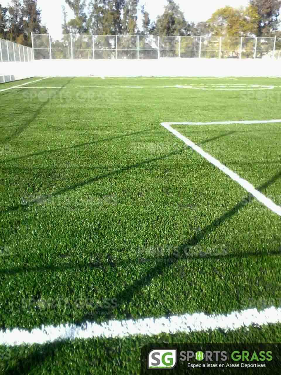 Cancha Futbol 7 Apaseo el Alto Guanajuato Sports Grass 03