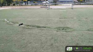 Cancha Futbol Soccer BINE Benemerito Instintuto Normal del Estado Puebla Sports Grass 05