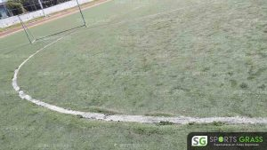 Cancha Futbol Soccer BINE Benemerito Instintuto Normal del Estado Puebla Sports Grass 06