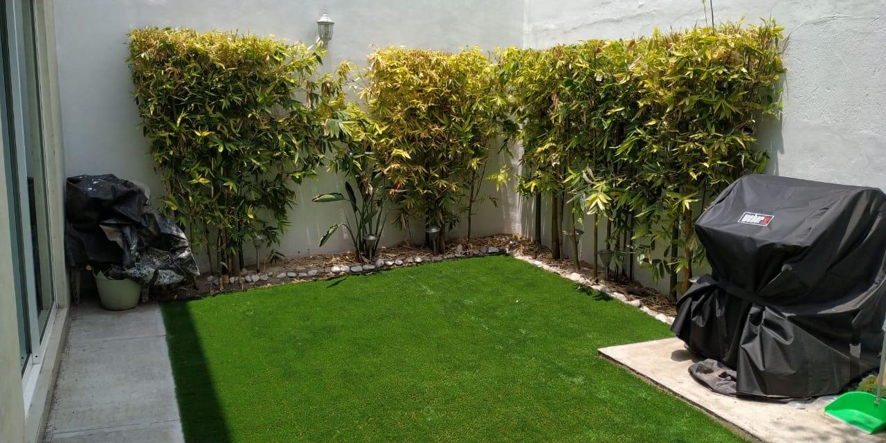 Pasto Jardin Residencial Puebla Sports Grass 01