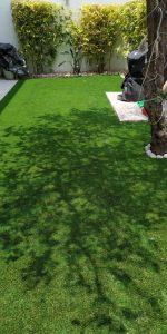 Pasto Jardin Residencial Puebla Sports Grass 02