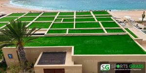 Roof-Garden-Hotel-Montage-Baja-California-Sur-06